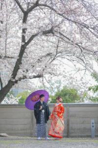 桜をバックに名古屋で人気の格安前撮り和装ロケーションフォトウェディング
