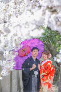 春の桜の時期に名古屋で人気の格安前撮り和装ロケーションフォトウェディング