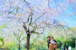 桜の庄内緑地で人気ロケーションフォトウェディング和装