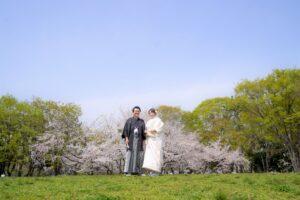 春の桜の時期に白無垢で和装ロケーションフォト名城公園