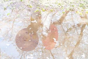 池に映る和装ロケーション撮影フォトウェディング前撮りポーズ
