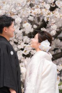 人気の白無垢で名古屋城桜の和装前撮りロケーションフォト
